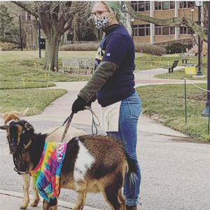A La Salle student pictured walking a goat on campus.