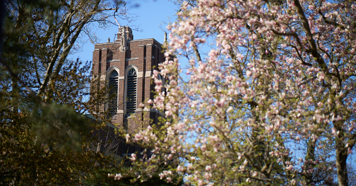 The bell tower at College Hall in the spring.