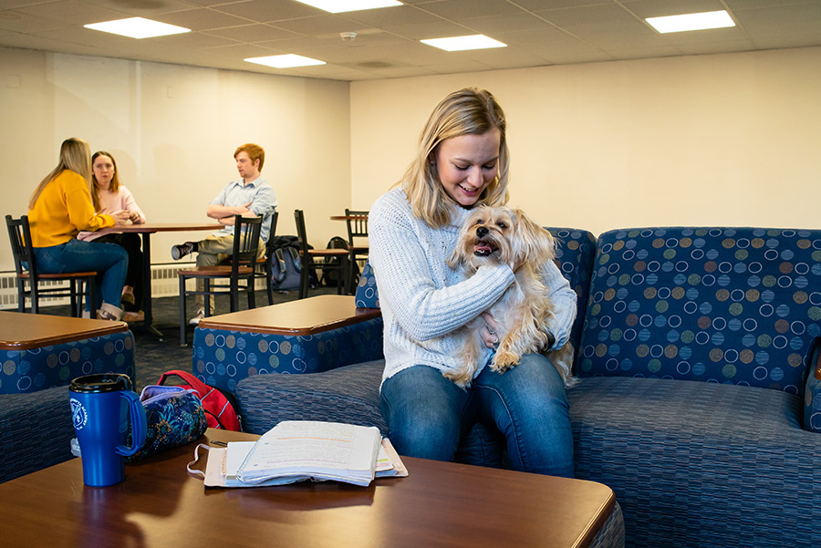 Animal Advocacy and the Dog Friendly Community lounge