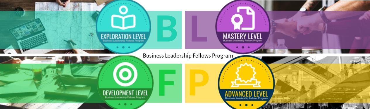 Business Leadership Fellows