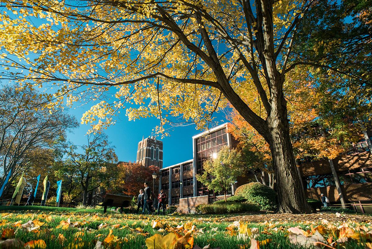 La Salle Campus Fall