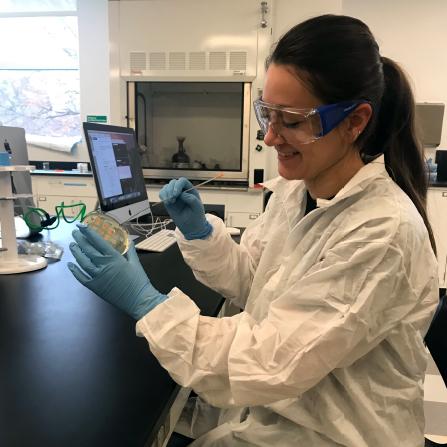 Student examining cells in petri dish